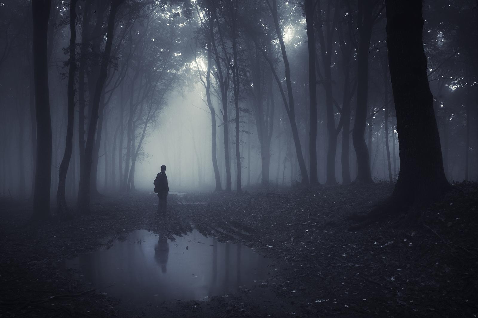 Goodbye in the mist