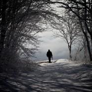 Alone, again